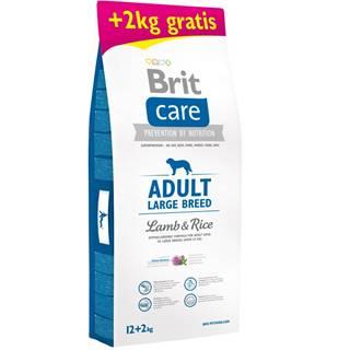 Brit Care dog Adult Large Breed Lamb & Rice - 1kg