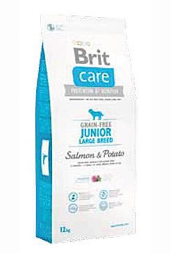 Brit Brit Care Dog Grain-free Junior LB Salmon & Potato 3kg