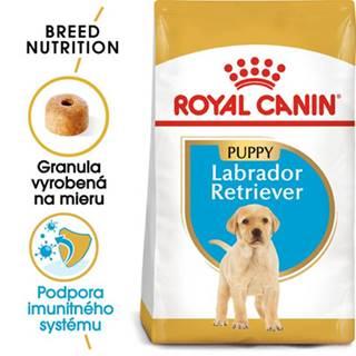 ROYAL CANIN Labrador Retriever Puppy 2 x 12 kg granule pre šteňa labradora