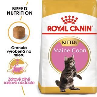 ROYAL CANIN Maine Coon Kitten 200g granule pre mainské mývalie mačiatka