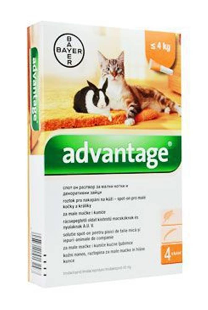 Bayer Advantage 40 10% 4x0,4ml pro malé kočky a králíky