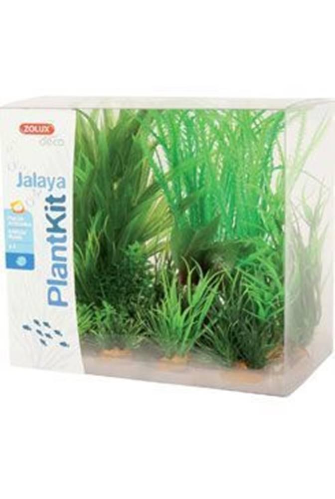 Zolux Rastliny akvarijné JALAYA 1 sada Zolux