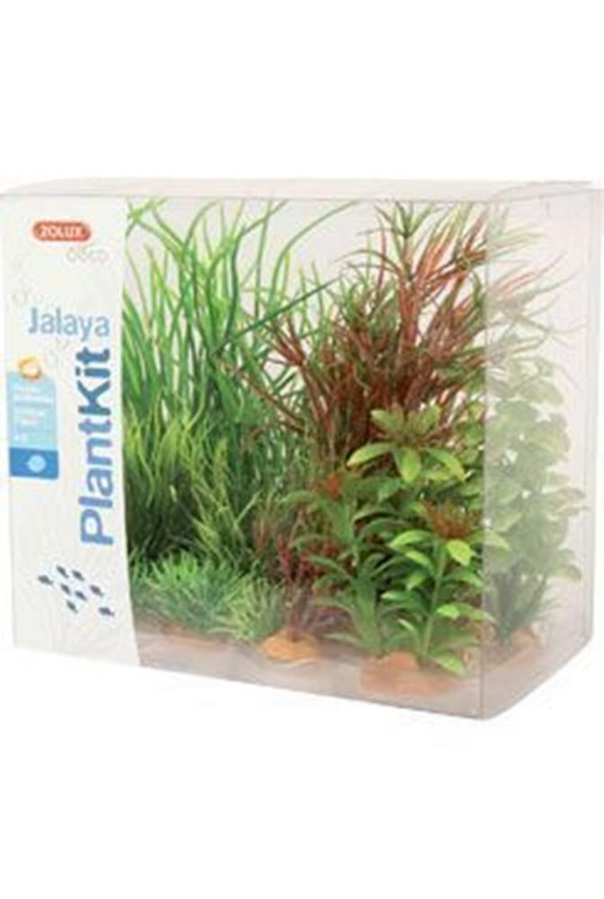Zolux Rastliny akvarijné JALAYA 4 sada Zolux