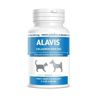 Alavis Celadrin pre psov a mačky 60cps 500mg