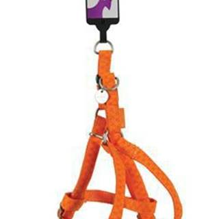 Postroj pes MAC LEATHER oranžová 25mm Zolux
